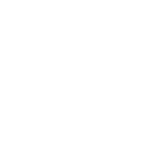 BLM Black Lives Matter W