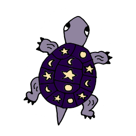 Funky Purple Turtle