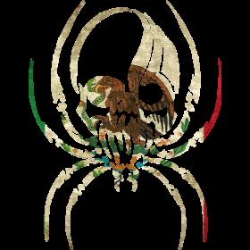 MEXICO SPIDER SKULL FLAG