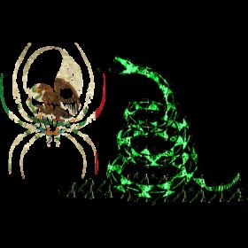 MEXICO SPIDER SKULL DONT
