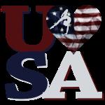 Love USA Gymnastics