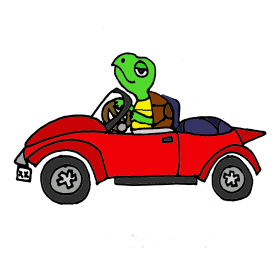 Turtle in Convertible