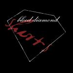 Blood Diamond -black logo