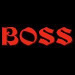 BOSS1-3.png