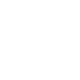 BOYFRIEND? NO, THANKS!