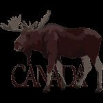 Canada Moose Souvenir