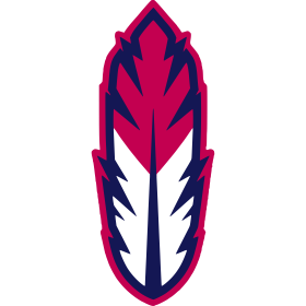 Go Tribe Feather