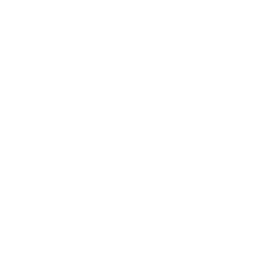 BECAUSE I'M THE BOSS, THAT'S WHY