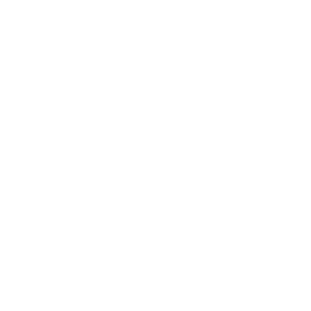 The US Of Thanksgiving