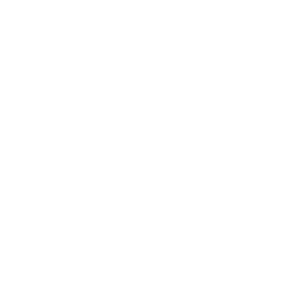 DYING IS FOR AMATEURS GYM WORKOUT FITNESS
