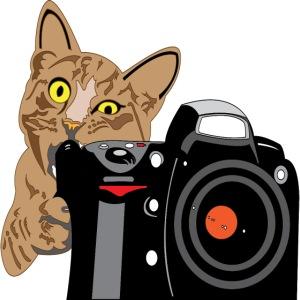 Cat Bites Camera
