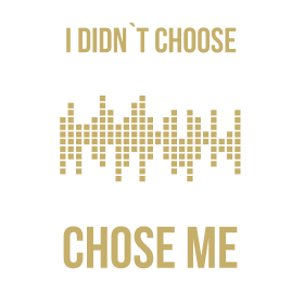 I didn`t choose audio engineering. Audio engineeri