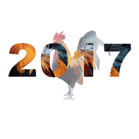 2017 cock