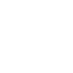 Never forget the way the vietnam veteran was treat