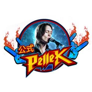 PelleK Spreadshirt Logo2 png