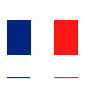 I Speak French Whats Your Superpower Tshirt