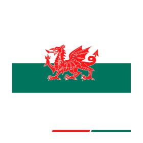I Speak Welsh Whats Your Superpower Tshirt