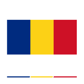 I Speak Romanian Whats Your Superpower Tshirt