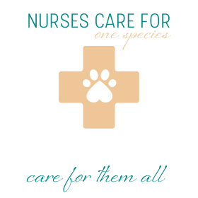 Nurses care for one species vet tech care for them