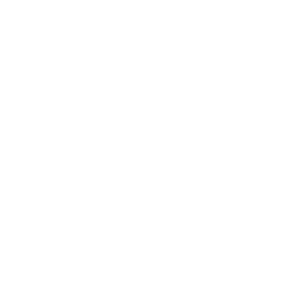 Mother Of American Paint Horses - American Paint H