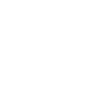 Mother Of American Western Horses