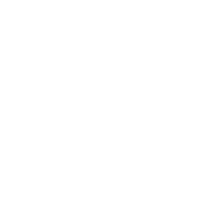 Bass Don't Let The  il Fool You Womens T-Shir