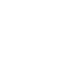 Horse  Don't Let The  il Fool You Womens T-S