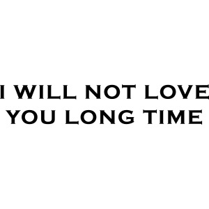 I Will Not Love You Long