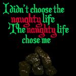 Naughty Life