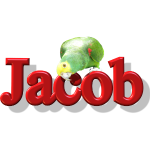 Jacob With a Parrot