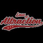 Law of Attraction (retro Color)