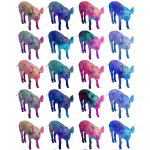 Colorful Piggy