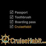 Cruise Check List - CruiseHabit
