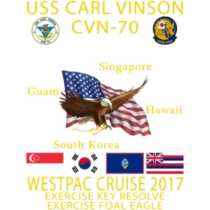 VINSON VFA192 2017.png