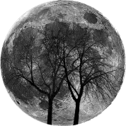 moon_with_trees