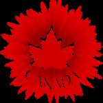 2 Cool Canada Souvenir