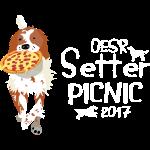 OESR 2017 Picnic Design
