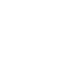 IM NOT ARGUING SHIRT 2
