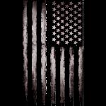 American flag Silver Vintage