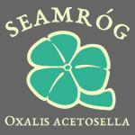 Shamrock Saint Patricks Day in vintage green