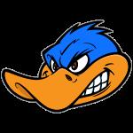 Coop Duck.png