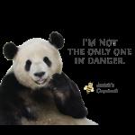 Endangered Pandas - Josiah's Covenant