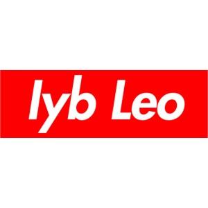 Iyb Leo Box Logo
