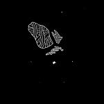 Eagle Clan Logo