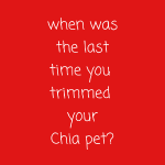 When Was The Last Time You Trimmed Your Chia Pet?