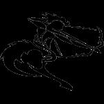 sagittarius zo