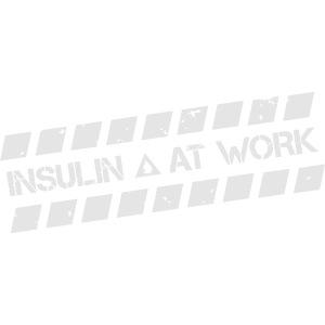 Insulin At Work