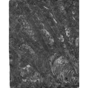 Oil spill (gray)