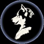 Siberian Husky Puppy Gift