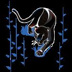 black panther creeping
